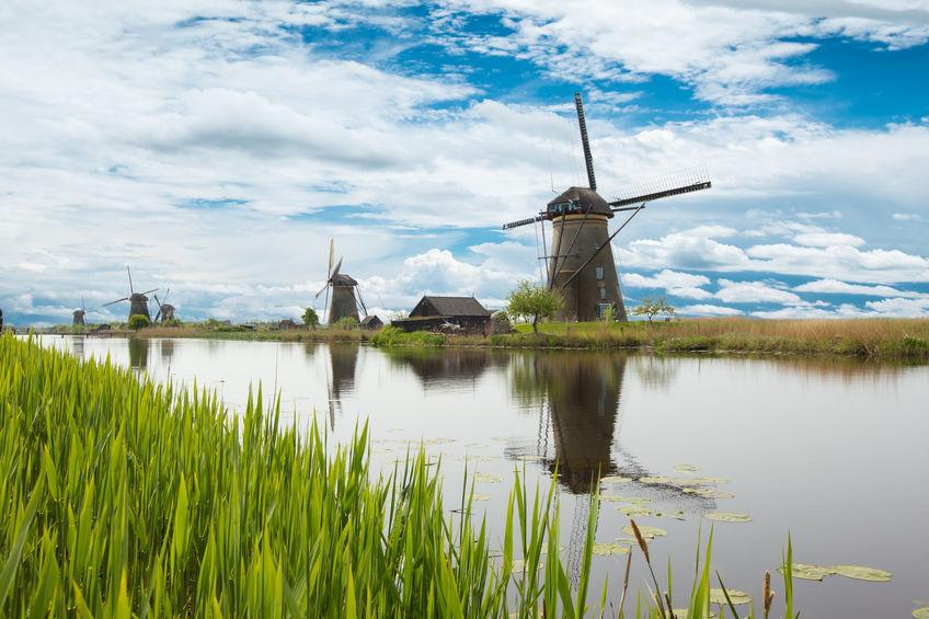 Zwrot podatku z Holandii w DORFIN.
